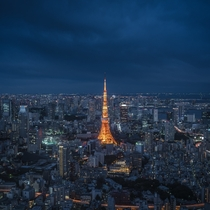Tokyo at night  Photo by Conor MacNeill