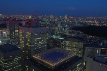 Tokyo Japan from the Metropolitan Government Building