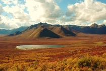 Tombstone National Park Yukon Canada - The tundra in the fall is like a watercolour painting