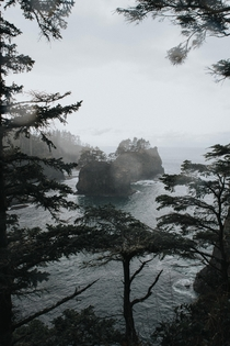 Took a  hour drive to reach the most top left point of the United States Cape Flattery WA