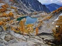 Took a mi hike to see these turning larches in the Enchantments WA Worth it