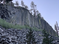 Took a nice early morning hike to Rainbow Falls and the Devils Postpile bear Mammoth CA