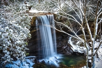Took advantage of the snowy weather to snap this shot of Cucumber Falls Ohiopyle PA
