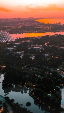 Took my drone out for a spin and captured this amazing sunrise of Gardens by the bay in Singapore