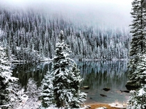 Took my hubby backcountry backpacking last weekend it snowed a little more than expected