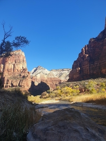 Took this after a nice morning hike to Angels landing Zion National Park Utah