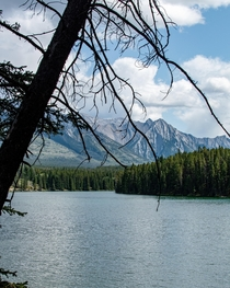 Took this at the bottom of a very steep hill at Johnson Lake in Banff National Park