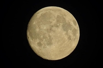 Took this in my garden when I was  without a telescope or even tripod just a canon sx in my pre-pubescent hands