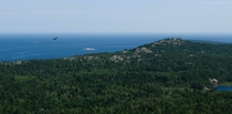 Took this picture at the top of Hogsback Mountain in Marquette MI located in the upper peninsula The hike was worth it