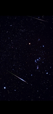 Took this single shot on film  yrs ago Perseids through Orion
