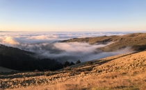 Top of Port Hills in Christchurch NZ