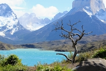 Torres del Paine Patagonia Chile October  Me