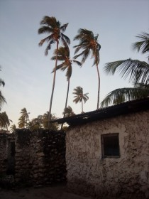 Traditional Zanzibari house at dusk OC