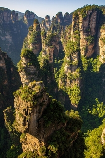 Trail rock formations at Zhangjiajie China