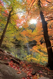Trail to upper fall of Kaaterskill NY