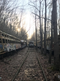 Train graveyard my friends and I explore It goes on for at least a mile and has such an eerie feeling