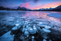 Trapped methane bubbles at Abraham Lake Canada  by Piriya Wongkongkathep