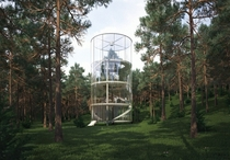 Tree in the house Kazakhstan by AMasow Design Studio