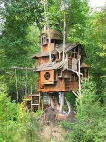Treehouse in Redmond Washington