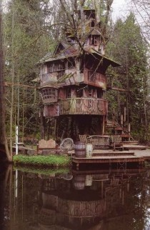 Treehouse Redmond USA by Steve Rondel
