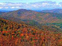 Trees starting to change near Roan Mountain TN