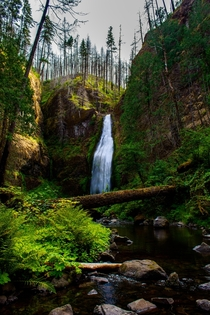 Trekked to the infrequently visited Clackamas Falls it didnt disappoint Mt Hood National Forest OR