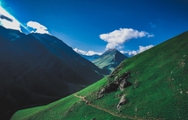 Trekking trail in Kashmir India