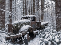 Triple axel truck left deep in the woods