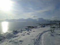 Tromso in march -