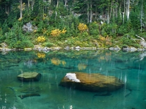 Tropical waters of the North Cascades WA