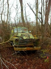 Truck in a forest Cambridge MD x