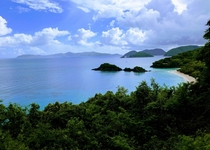 Trunk Bay St John USVI