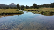 Tuolumne Meadows Yosemite National Park