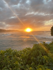 Turtle Bay Oahu Hawaii OC
