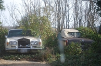 Two abandoned Rolls Royces sitting Behind a house in Callaway Virginia USA