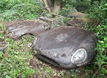 Two E-Type Jaguars abandoned and rusting in peace in the UK