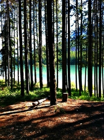 Two Jack Lake campground in Banff Alberta Canada