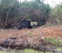 Two long forgotten cars uncovered  years later after clearing some land
