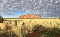 Uluru-Kata-Tjuta-Nationalpark Northern Territory Australia  - Peacefully soon