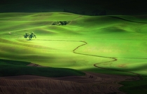Unbelievable Landscape in Palouse Washington