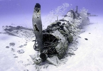 Underwater Corsair Plane Wreck from WW Photo by Justin Branam