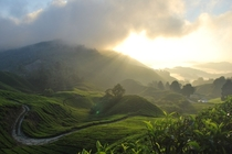Unedited sunrise in the Cameron Highlands of Malaysia