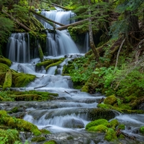 Unnamed Waterfall Gifford Pinchot Forest Washington