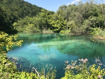 Unreal colours in the water at Plitvice National Park Croatia