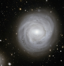 Unusual Spiral NGC  in the Coma Galaxy