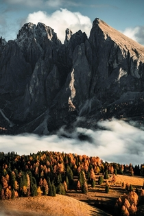 Up high on mountain plateaus Dolomites Italy  wilhelmgisow on Instagram