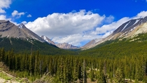 Valley - Jasper National Park Canada