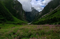Valley of Flowers National Park in Garhwal Himalayas India  By Rohit