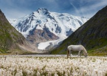 Valley of Unicorns Kyrgyzstan