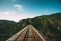 Vance Creek Bridge - Shelton WA by Jay OByrne
